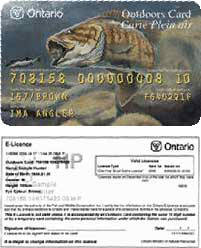 Ontario walleye fishing for Ct fishing license online
